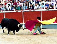 Tarde de toros 2013